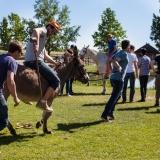 Donkey polo - Puszta Olympics